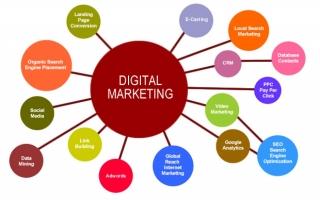 Nhân viên SEO / Digital marketing